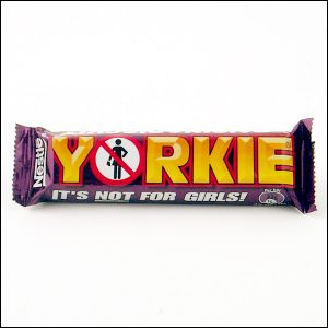 Yorkie Raisens & Biscuit